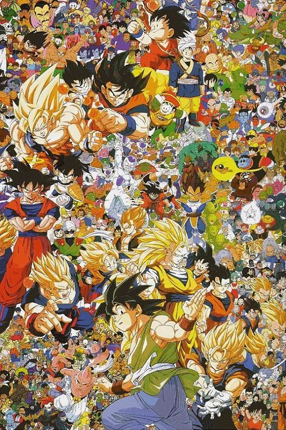 http://www.unificationfrance.com/IMG/jpg/dragon_ball_z_durango_mexico_3.jpg